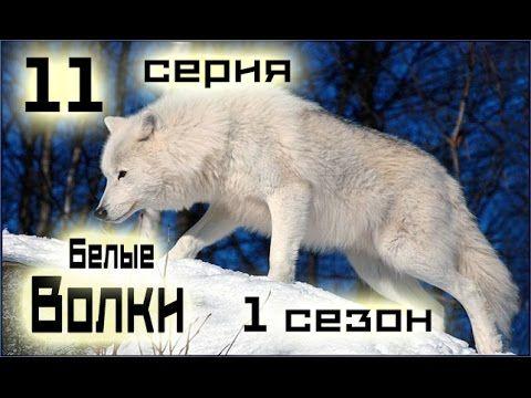 Сериал Белые волки 11 серия 1 сезон (1-14 серия) - Русский сериал HD