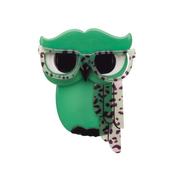 Erstwilder Waldo the Wacky Wise Owl (Mint Resin Brooch) in Original Box