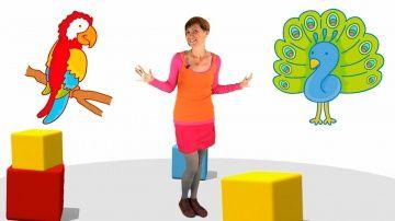 """Мультики малышам - Весёлая Школа - птицы (развивающие мультфильмы и видео презентации) http://video-kid.com/10849-multiki-malysham-vesyolaja-shkola-pticy-razvivayuschie-multfilmy-i-video-prezentacii.html  Развивающее видео для детей """"Весёлая Школа"""" - это короткие интересные уроки для самых маленьких. Давайте вместе с Машей посмотрим на экран и угадаем, какая картинка там появится. Сегодня мы приготовили для вас 6 рисунков и на каждом из них птица: голубь, страус, воробей, попугай и курица…"""