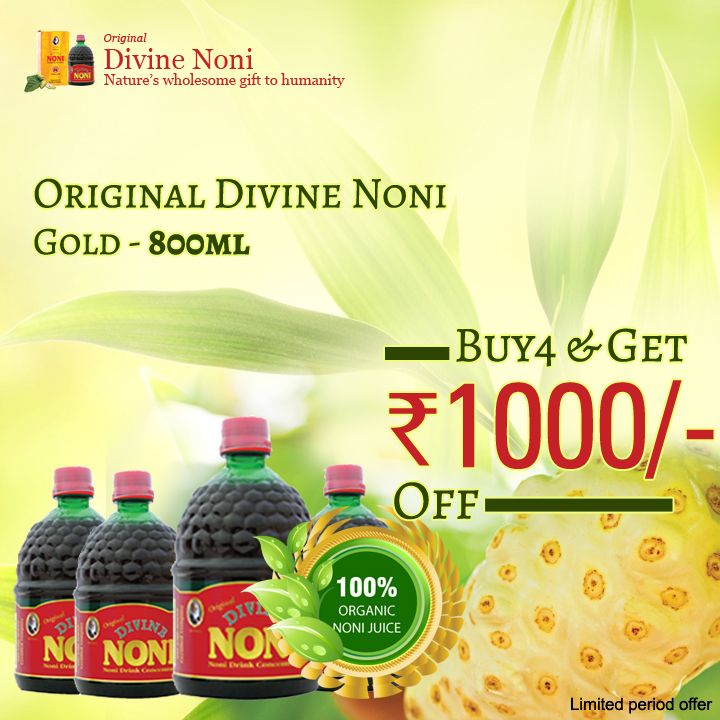 Divine noni business plan