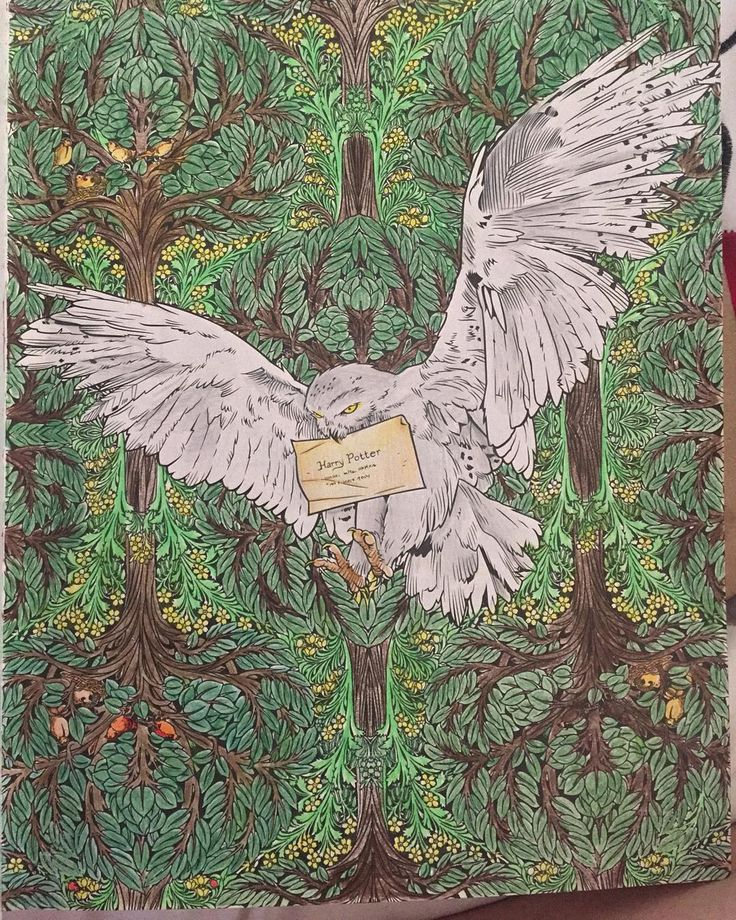 we love this colouring in of hedwig colouring incoloring booksmischief managedhogwartsharry pottertheatretiedrawing