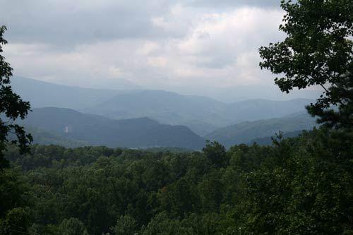Moose Crossing In Gatlinburg Tennessee View Vacation