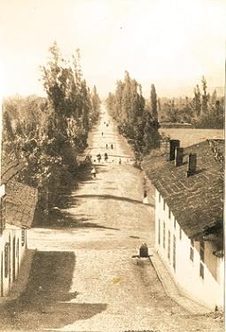 Aspecto de la Calle San Juan, Medellín antigüo Siglo XIX