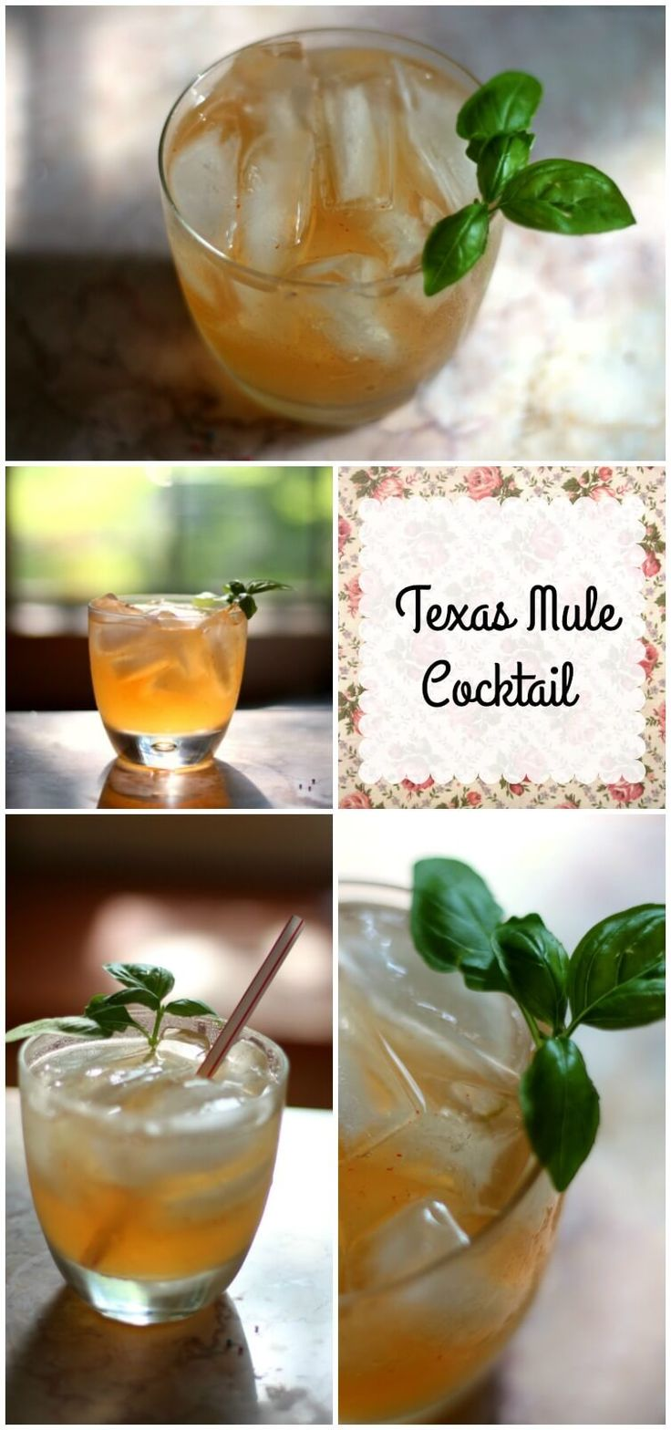 Texas Mule Cocktail is made with tequila and peach schnapps. Sweet, spicy, and refreshing with a big taste of Texas. SO YUMMY! :) from RestlessChipotle.com