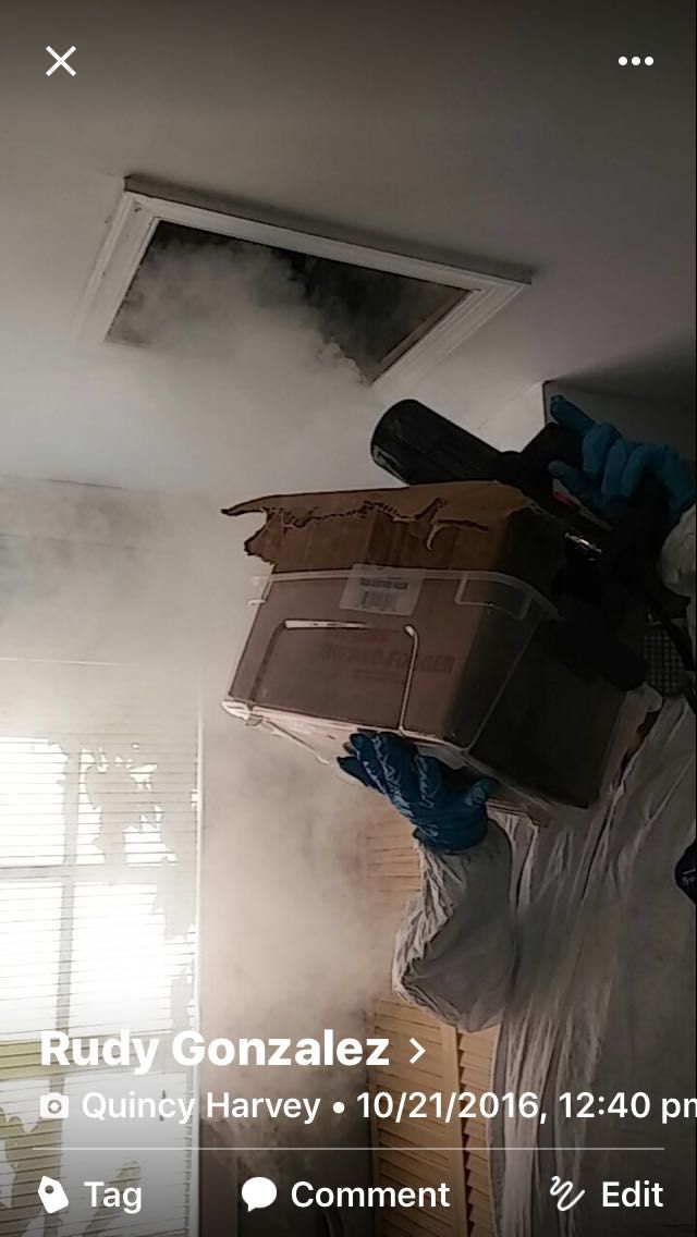 Mold Inspection & Mold Testing Miami and Fort Lauderdale - Mold Service for Home & Commercial ☎ 1-305-763-8070
