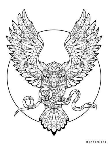 257 best Owl Coloring Pages for Adults images on Pinterest