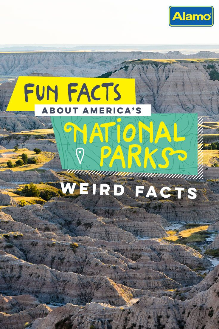 How did Mount Rushmore get its name? Learn the answer to that and discover 19 other curious facts about our National Parks.