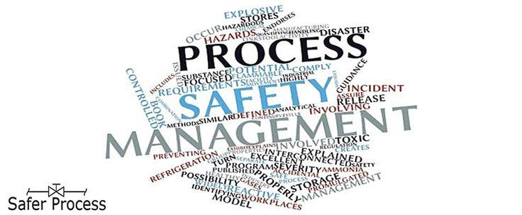 DuPont Process Safety Management (PSM) Model
