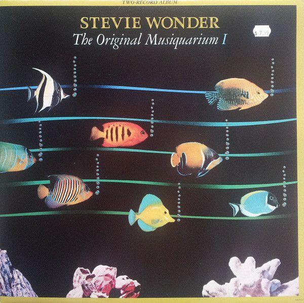 10 Best Ideas About Stevie Wonder On Pinterest Berry
