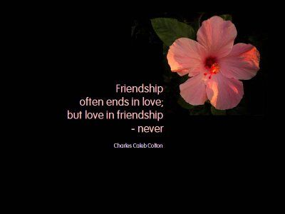 Deep Inspirational Quotes About Love | 30 Heart Touching Friendship Quotes | funlava.com