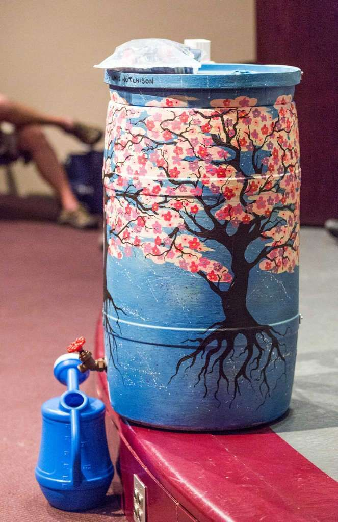 People paint their rain barrels in many creative ways with opaque acrylic paint. The paint is necessary to keep light from getting inside the barrel and growing algae. Saturday