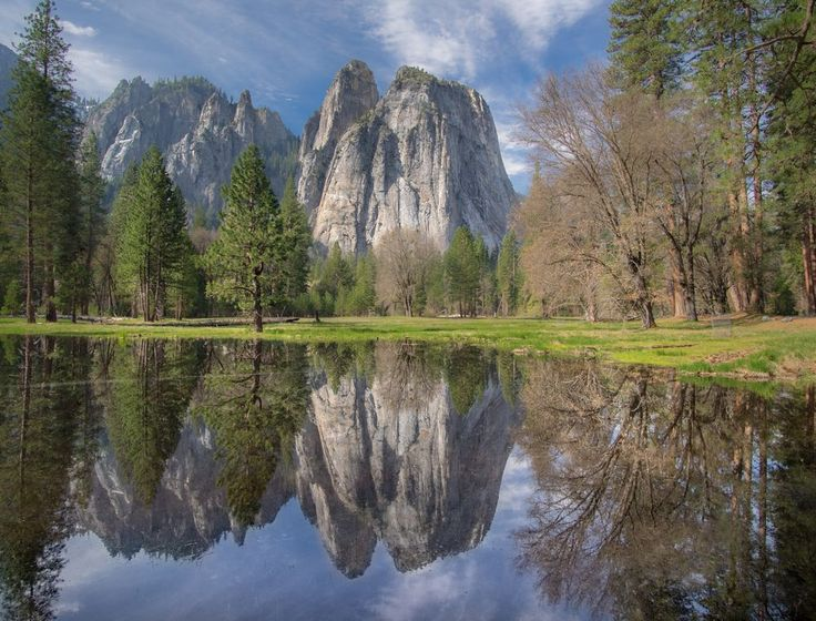 Cathedral Rocks, YNP Photo by Tom Morgan — National Geographic Your Shot