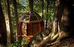 Ein geheimes Baumhaus irgendwo im Wald. Dafür könntet ihr euch auch begeistern, oder? Joel Allen hat seinen Job als Software-Entwickler geschmissen und ist lieber Zimmermann. Erstmal hat er sich da ein Baumhaus irgendwo bei Whistler in den kanadischen Wald