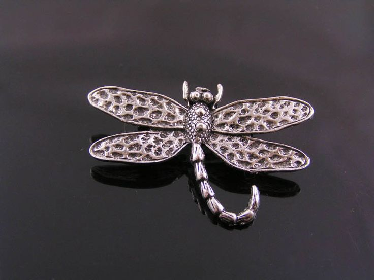 Dragonfly Brooch, Cute Pin, Bug Brooch, Gift Idea, Handmade Brooch, Lapel Pin, Pin Badge, Dragonfly Pin, Dragonfly Jewelry, Bug Jewelry by ClassicMinimalist on Etsy