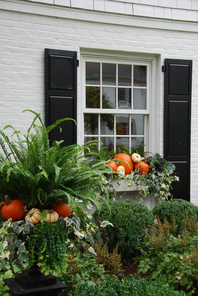 pumpkin window box idea living giving and with style and grace - Window Box Planters