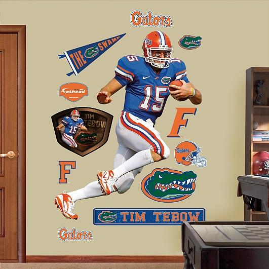 25 Best Ideas About Florida Gators Room On Pinterest