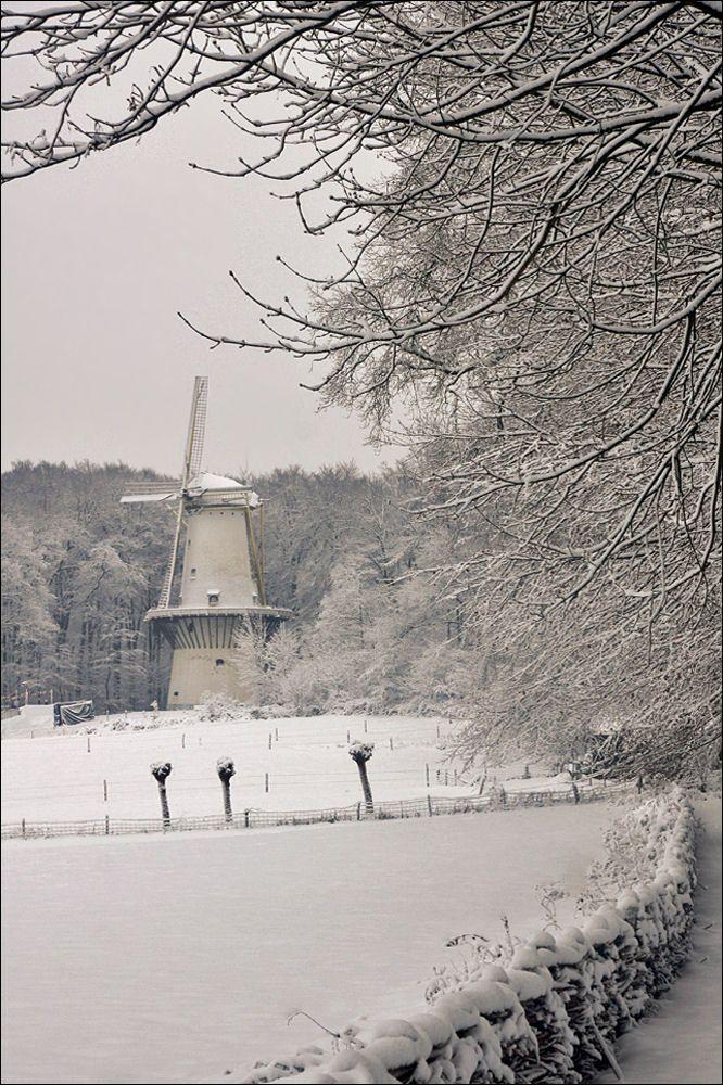 Winter in Openlucht museum Arnhem
