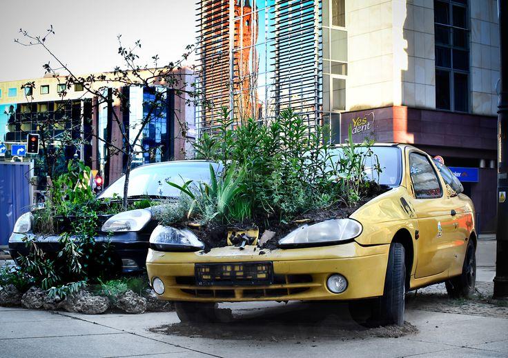 New #eco #cars in #wroclaw Ekologia w centrum Wrocławia ;) #yesdent #stomatologwrocław #humor #smile