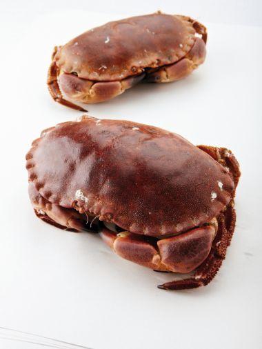 Bisque van krab