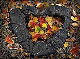 Резултат с изображение за есенни пейзажи