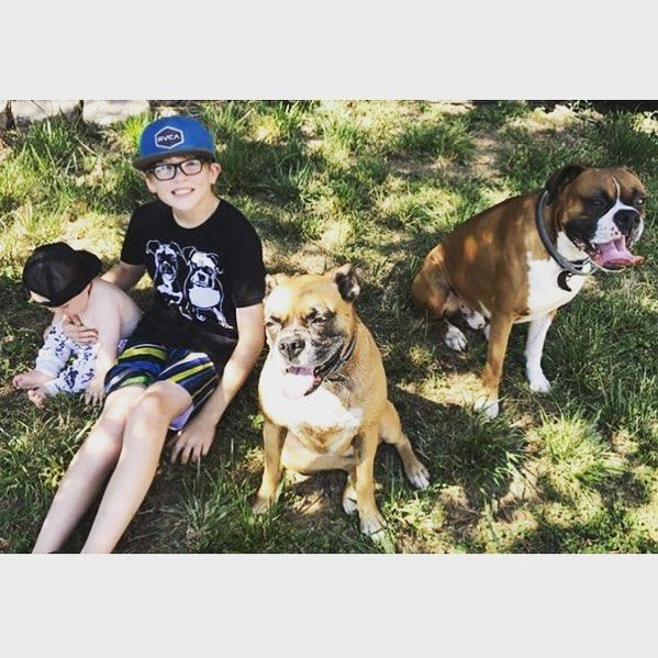 Getting baby, young teen and two Boxer dogs to pose for a photo is not the easiest of tasks! We personality love it, thanks to Mommy @_jennifer__barrett_ for sharing the photo!   Baby is wearing our custom print organic baby leggings and boy is wearing t-shirt with print of two Boxer doggies.    #monofaces