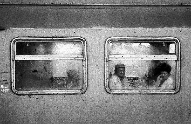 on the train / 35mm film / analog