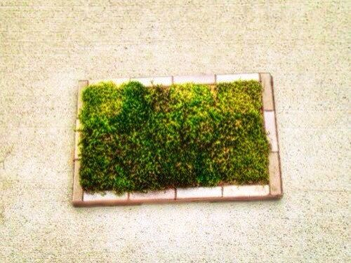 Size   24 x 18 x 1 Materials   Cork Matting   Cork is a great  Moss Bath  MatsGreen. The 25  best Moss bath mats ideas on Pinterest   Green bath mats