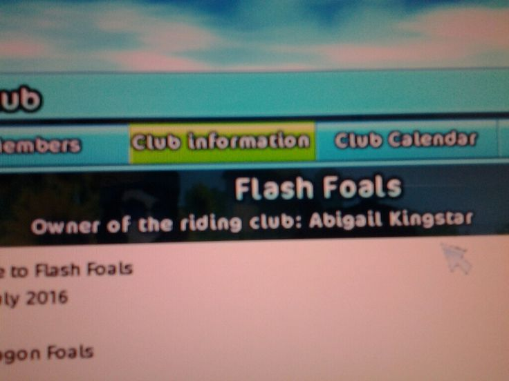 The best club ever to come to Star Stable! <3