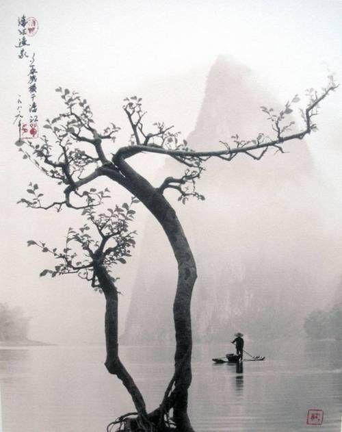 muirgilsdream:    Untitled, Don Hong-Oai, photographer.