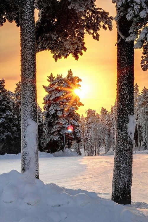 Snow Sunset, Pyhatunturi, Finland photo via rebecca