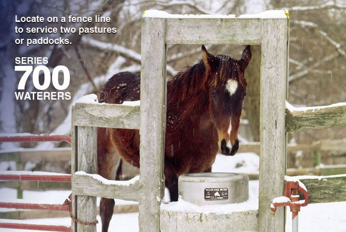 Nelson Mfg | Automatic Horse Waterers Series 700 - Locate on a fence line to service two pastures or paddocks. https://www.nelsonmfg.com/horse-waterers/700/