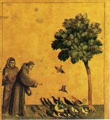 Картинки по запросу франциск ассизский