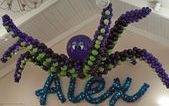 """idea for balloon art (not a spider- maybe an animal from """"If I ran the zoo"""" )"""