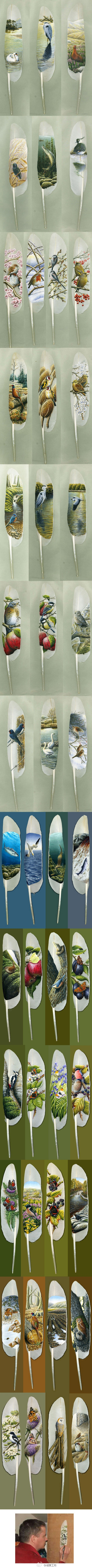 Feather Art by Ian Davie