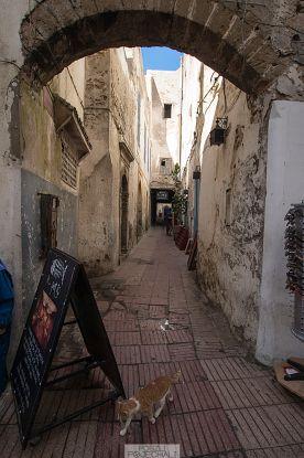 Essaouira w jeden dzień – magiczna turystyczna  Essaouira, Morocco