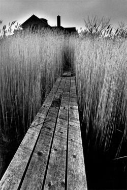 crashinglybeautiful:  Jeanloup Sieff, La maison noire, East Hampton, New York, 1964. With gratitude to Wood s Lot
