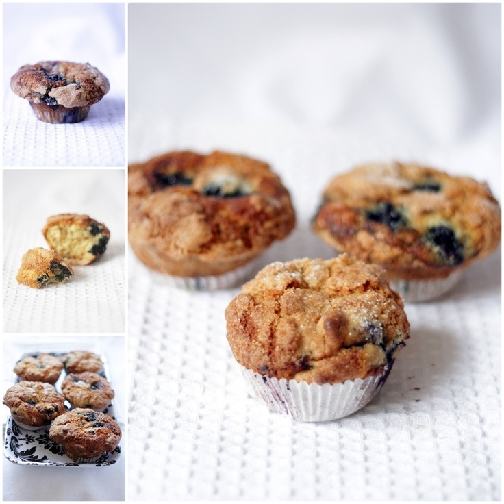 Too-Easy Blueberry Muffins from Donna Hay's Fast, Fresh, Simple