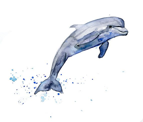 Dolphin watercolor painting Art print. Purple blue grey colors. Zen painting. Dolphin drawing in 8 x 10 or A4 size on Etsy, $21.71
