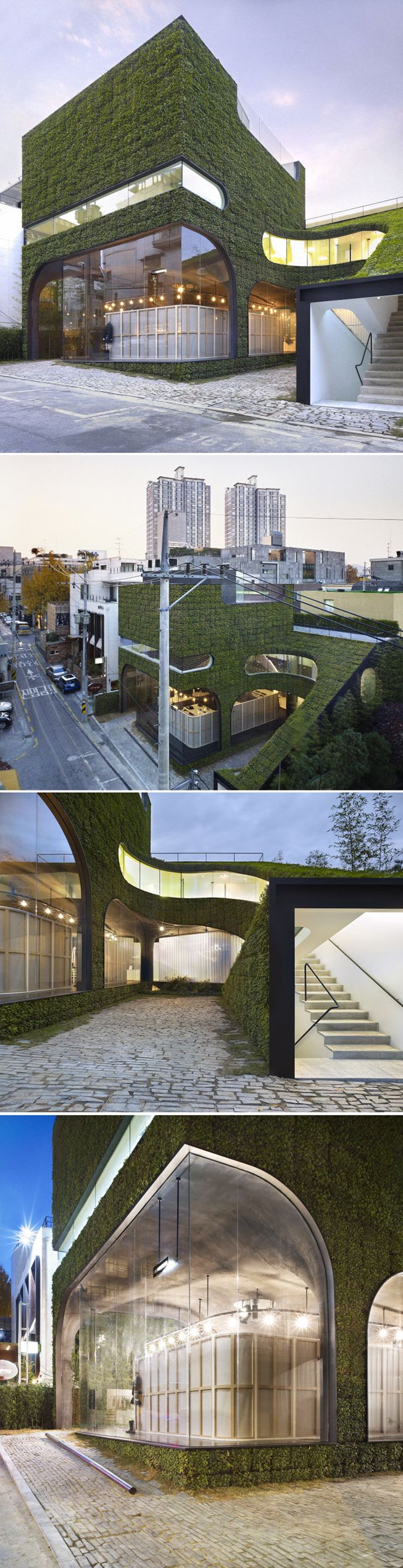 Ann Demeulemeester Shop by Mass Studies_Building-to-Land Ratio: 58.44% • Floor Area Ratio: 119.76% • Building Scope: 3F, B1 • Structure: RC • Finish: Vertical garden (Pachysandra terminalis), Exposed color concrete