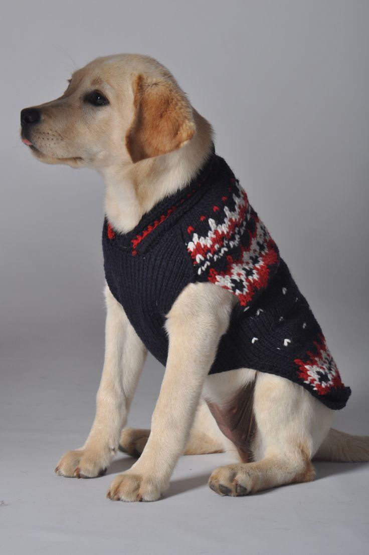 23 best Pampered pet! images on Pinterest | Hunde, Handgefertigt und ...