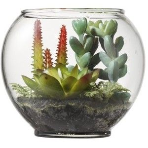 Threshold Faux Succulents in Glass Terrarium - with Red Cact ...