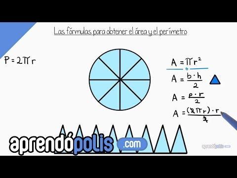 Area And Circumference Of Circle - YouTube