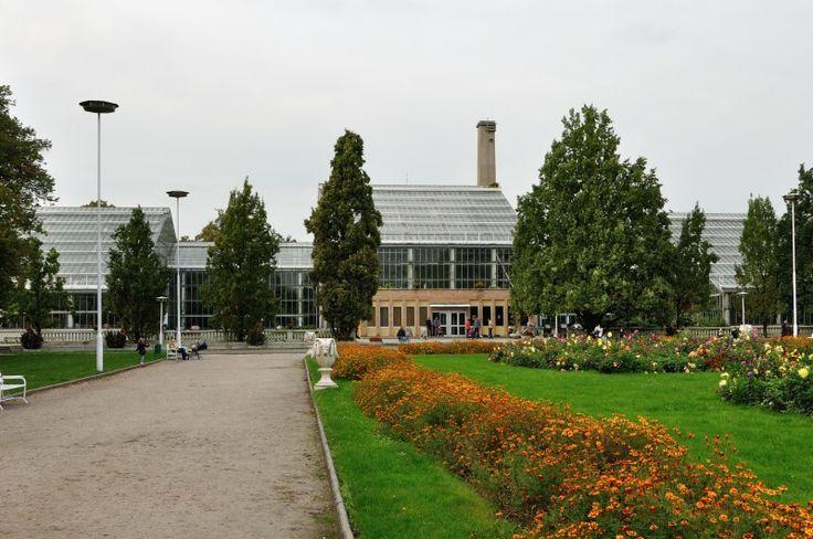Palmiarnia w Poznaniu Poznań