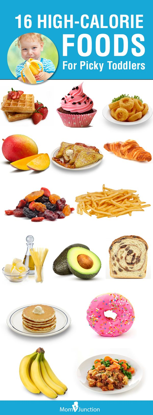 Highest Calorie Foods For Babies