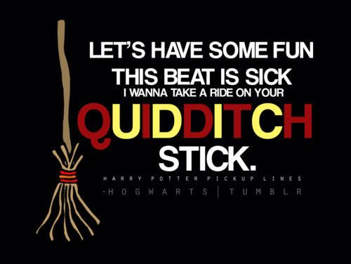 bahahahaLaugh, Lady Gaga, Harrypotter, Wizards, Quidditch Sticks, Funny Stuff, Things, Harry Potter Humor, Funny Harry Potter