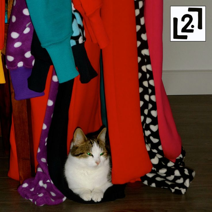 Tulum (Jumpsuit). Kedi.