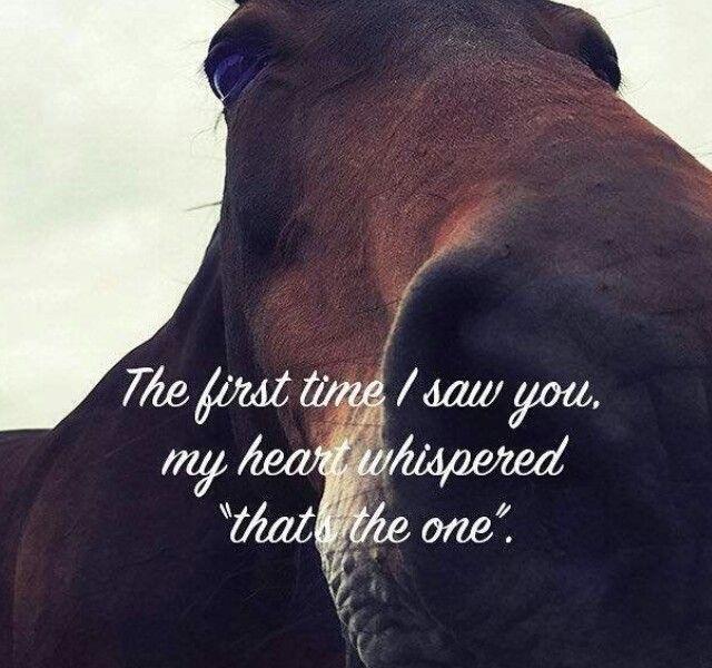 So very true.❣