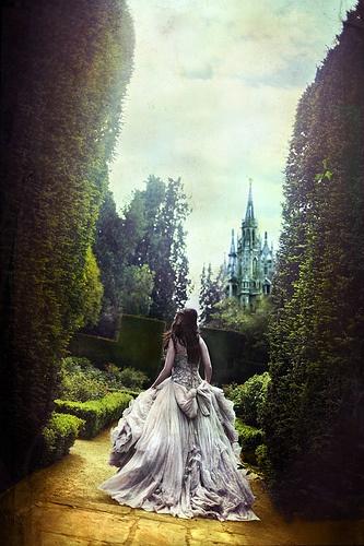 Ballgown in a hedge maze...um...yes!!