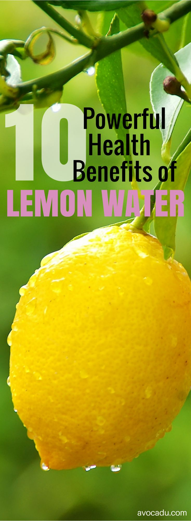 10 Powerful Benefits of Lemon Water | Detox | http://avocadu.com/the-detoxifying-powers-of-lemons/