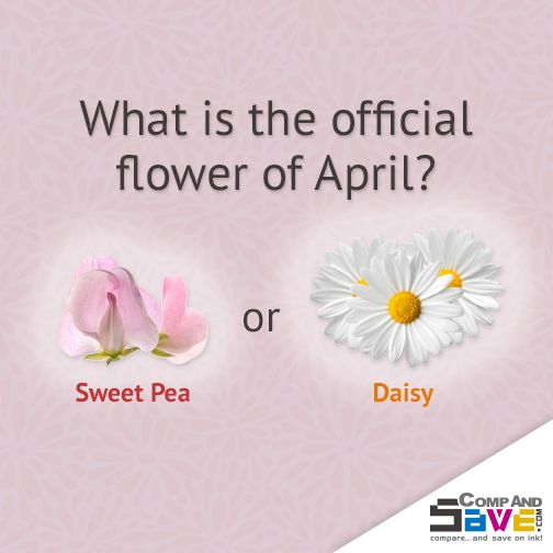 What Is The Flower For April: 1000+ Images About Games & Trivia On Pinterest